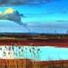 Kysla poda pred jadrovou elektra