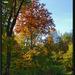 Potulky jesennou prírodou