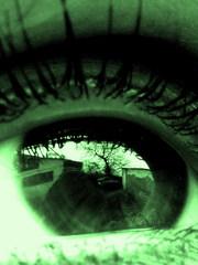 čo to vidia tvoje oči?