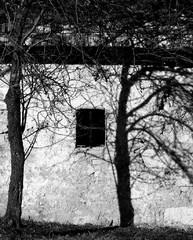 Stromček, domček, okienko