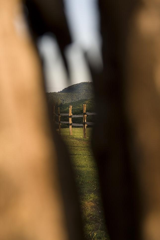 cez plot