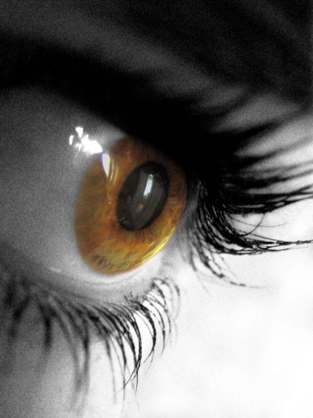 my eye 2