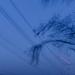 Stromovo-stožiarový experiment