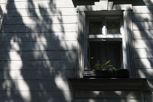 Okno v tieni