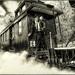 Brecon Mountain Railway 2