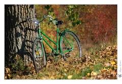 .:Bicyklova:.