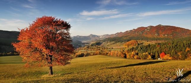 .:Súľovská jeseň:.