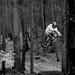 Bike in Hradská n.2