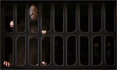 Túžba za slobodou