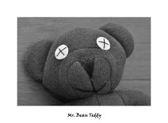 Mr. Bean Teddy..