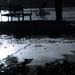 dunajska zaplava report....