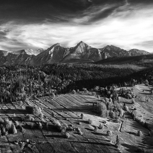 A Tribute to Ansel Adams