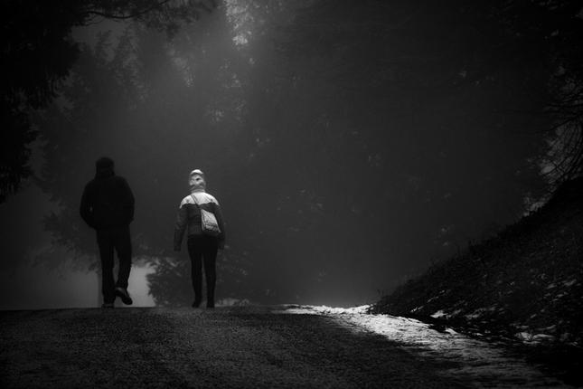 Prechadzka v hmle
