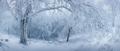 Zamrznuté Karpaty