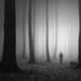 osamelý pútnik