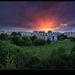 petrzalska sunsetovka