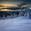 Strážcovia zimy