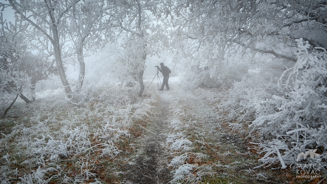 fotograf v zajati pani zimy