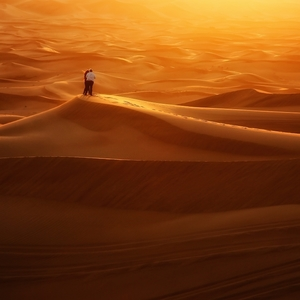 Párik na púšti