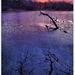 Rusovecke jazero