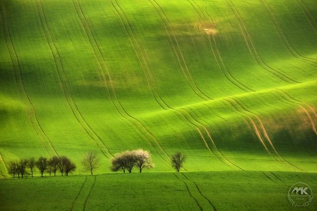 Jar na Morave