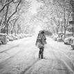 v snehovej nádielke