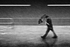 V búrke