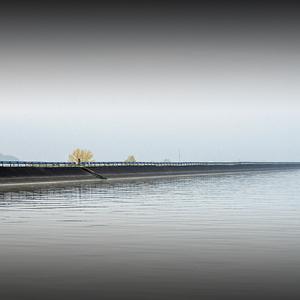 Dunajská hrádza
