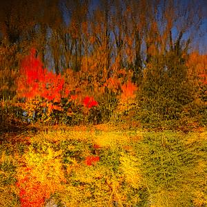 Jesen impresionista