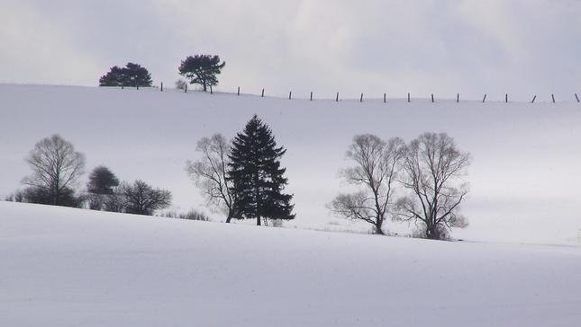Čistota zimy