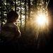 ... slnko na konci lesa