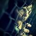 KE3N OldSchool III. - uväznená