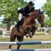 Horse - Donatella