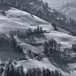 Alpske luky BW