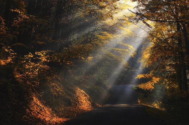 Mysticka cesta