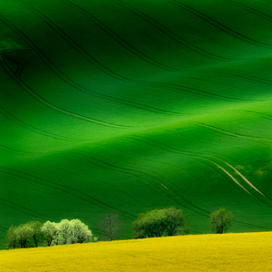 Na zelenych vlnach