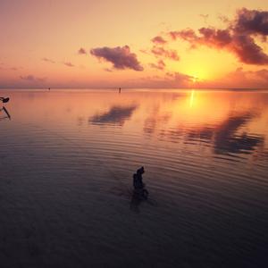Zanzibarska...