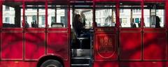 ...ja a môj autobus