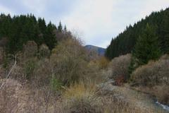 Zákutie pri Rajeckej Lesnej