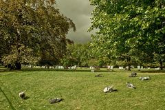 Teplo v Hyde Parku