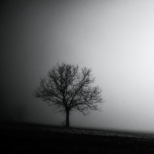Zimná depresia