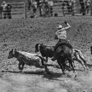 Rodeo Muráň