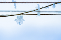 Sneh 1ks... :-)