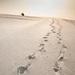 kroky do neznáma