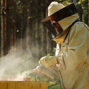 zo života včelára