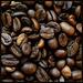 Kavove zrna