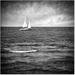 Na sirom mori