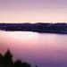Ružová na Dunaji