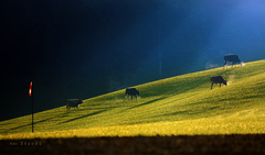 Tam hore v horách na vidieku _ 3