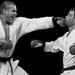 športové karate - tsuki